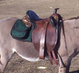 Kimberley Series Superior Poley from Down Under Saddle Supply